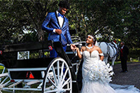 Man and Women just married getting out of a horse and buggy ride.